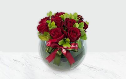 گل رز هلندی به همراه شمشاد