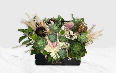 خرید آنلاین باکس گل ساکولنت
