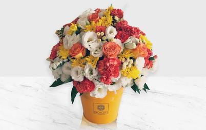 باکس گل شادی