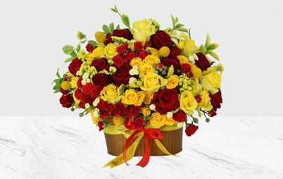 باکس گل کویین