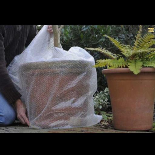 استفاده از پوشش برای گیاهان