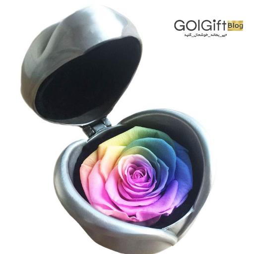 خرید اینترنتی گل رز جاودان هفت رنگ