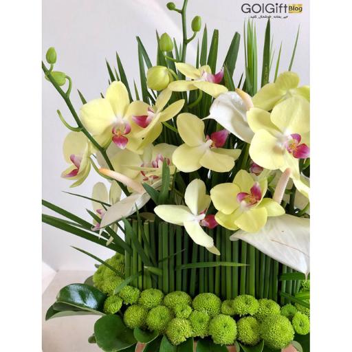 خرید باکس گل خواستگاری