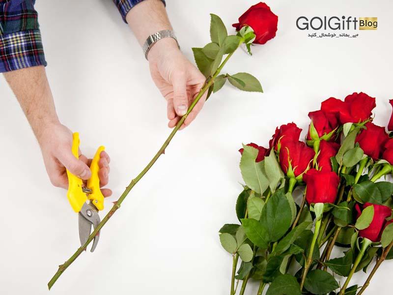 گل گیفت | نگهداری گل رز در آب