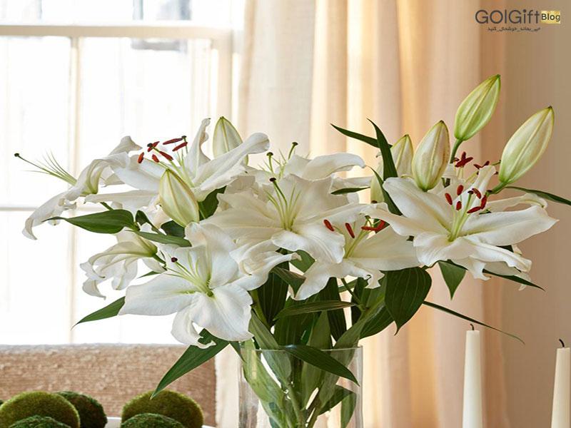 گل گیفت | دسته گل لیلیوم