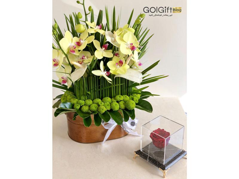 گل گیفت | باکس گل خواستگاری