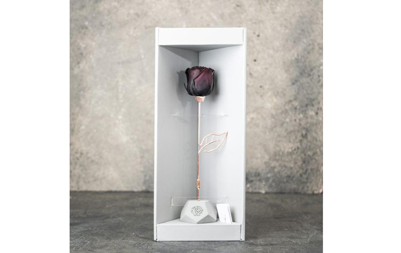 خرید باکس گل رز جاودان بنفش