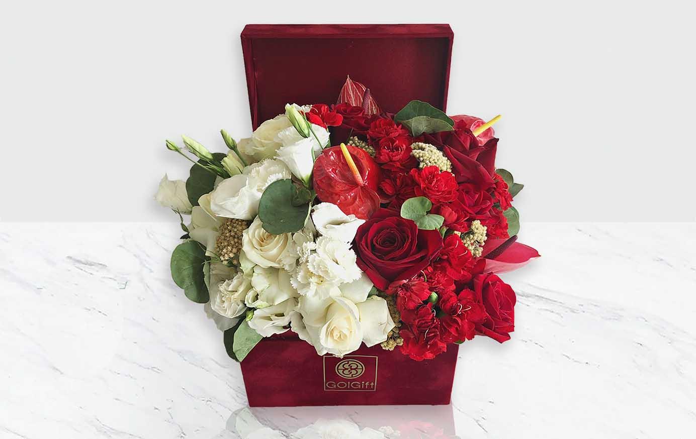 خرید گل و گیاه ارزان