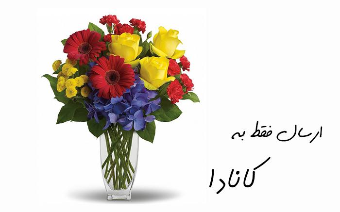 ارسال گل به ونکوور