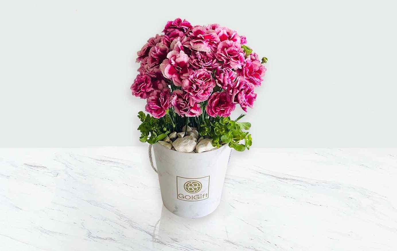 خرید اینترنتی گل و گیاه