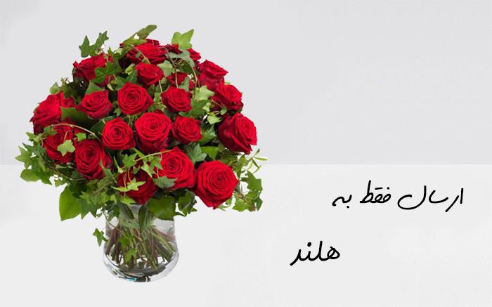 ارسال گل به آمستردام