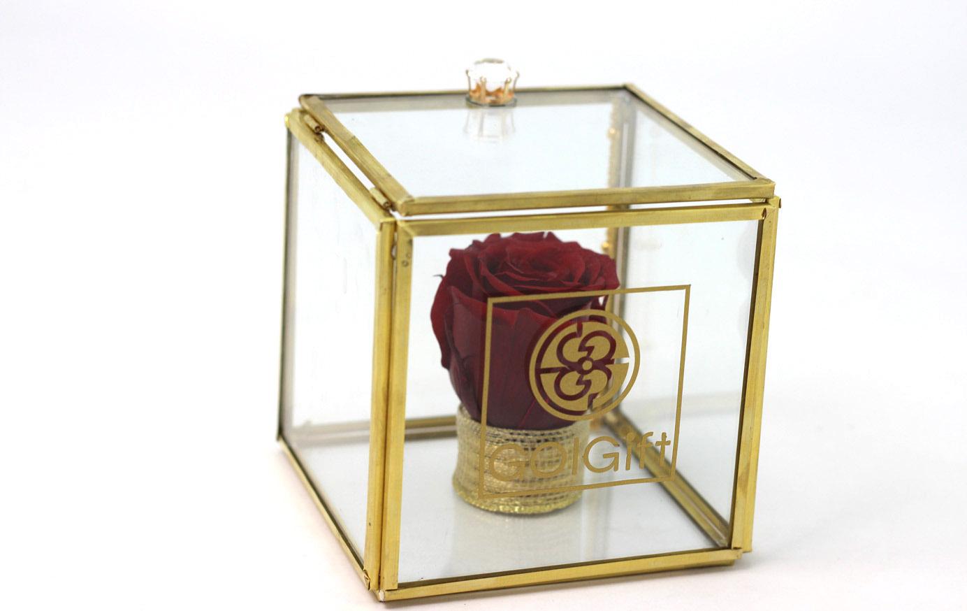 رز جاودان در باکس شیشهای