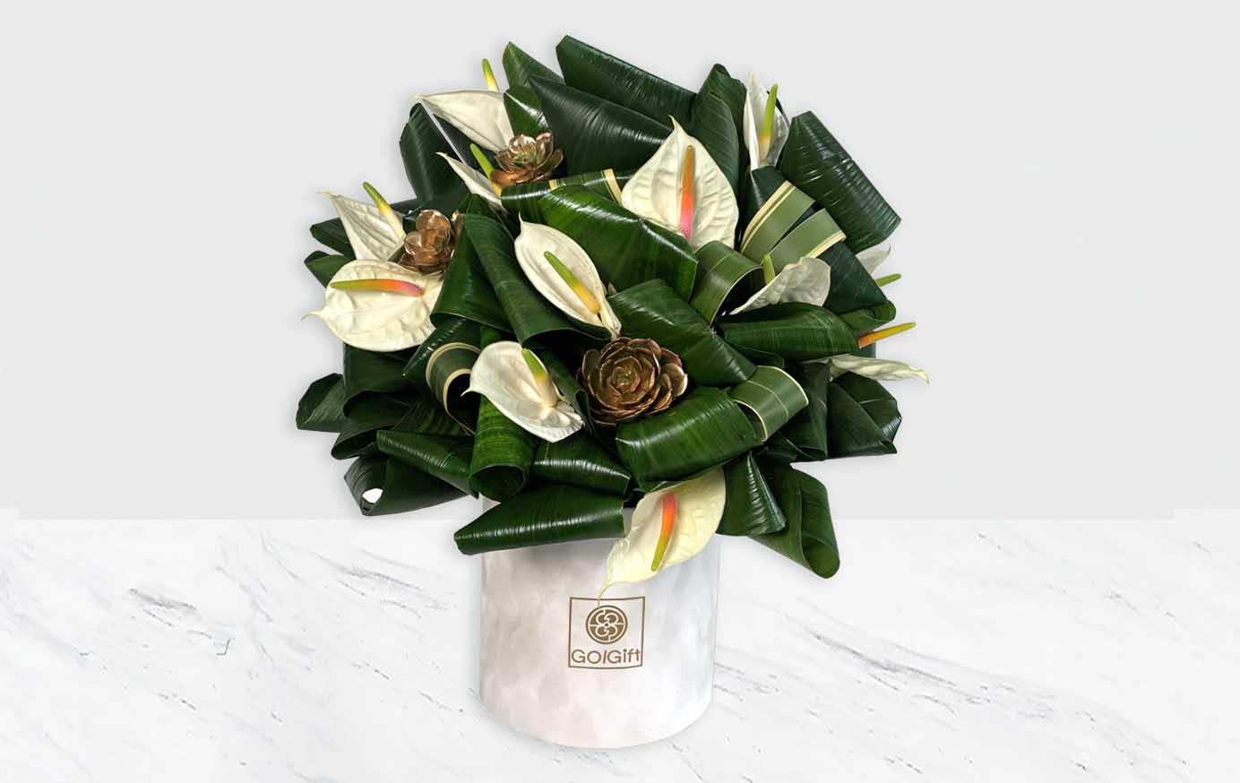 باکس گل آنتوریم مخمل سفید