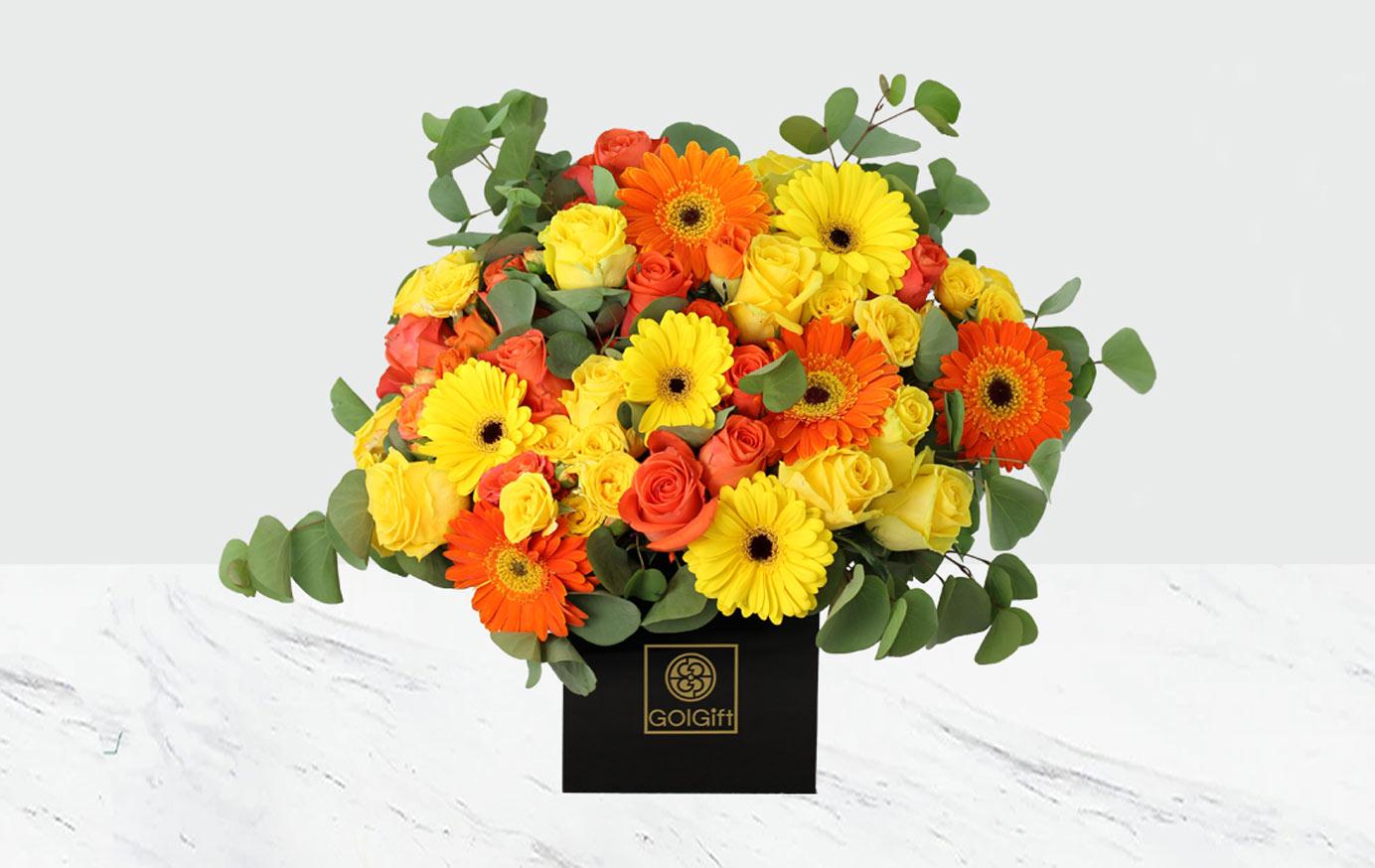 باکس گل آفتابی