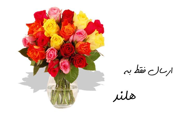 ارسال گل به هلند